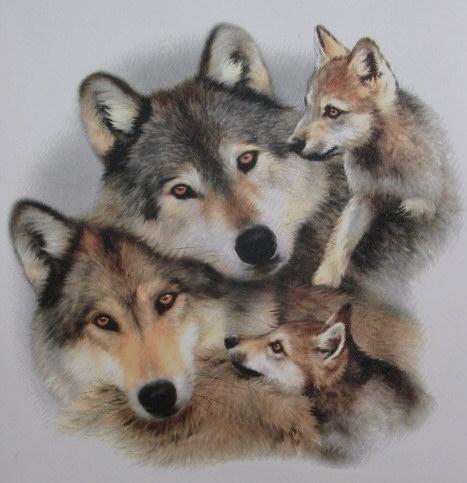 Resco 30 10 2005 for Ardeatina arredamenti di lupi gabriella