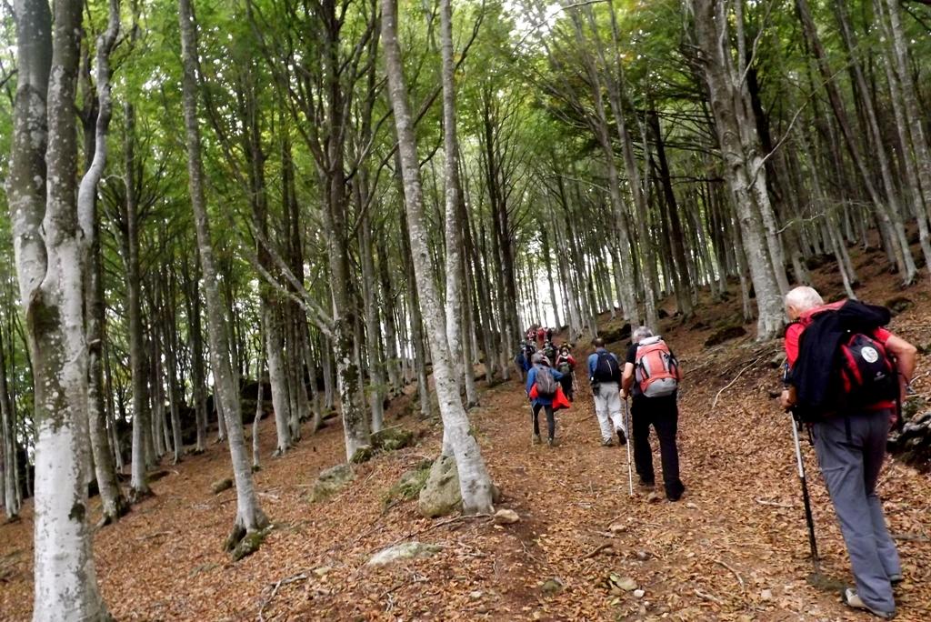 Trekking Bagno a Ripoli