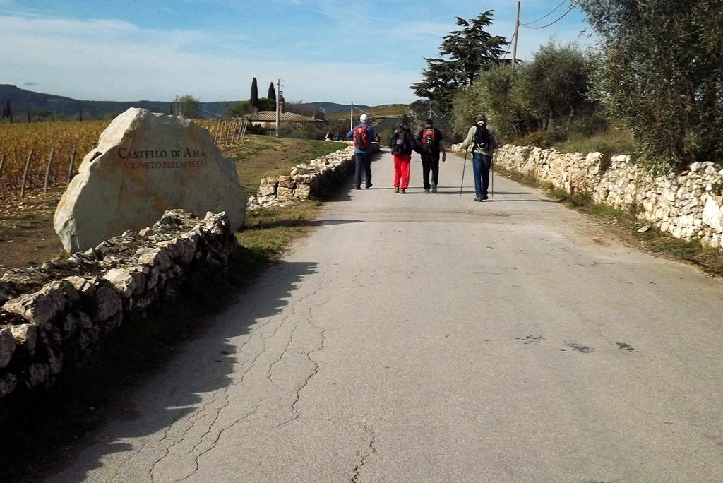 Collegamento Album Foto – Gruppo Trekking Bagno a Ripoli